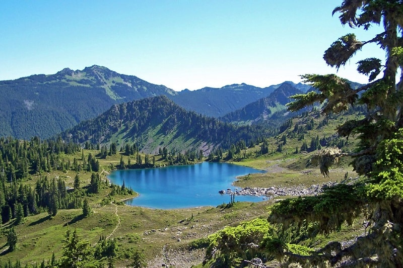 Seven Lakes Basin, Olympic National Park