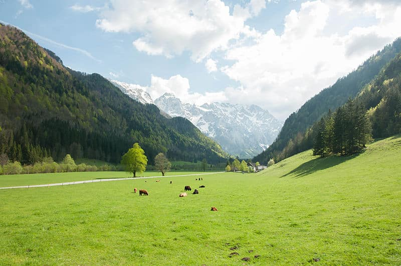 Spend an Eco-weekend in the Logar Valley