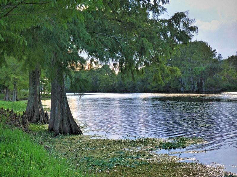 Park in Florida at Orlando