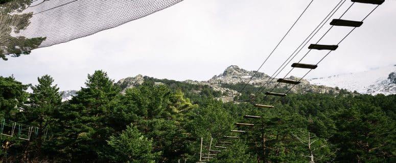 Zip line in woodland